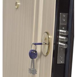 Входная металлическая дверь Premier 2